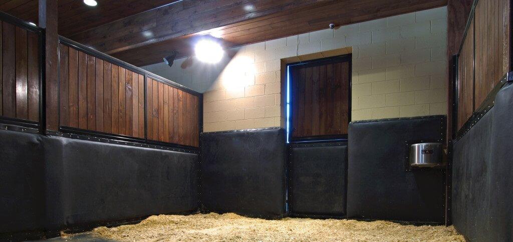 Zachte muren voor schoppende paarden